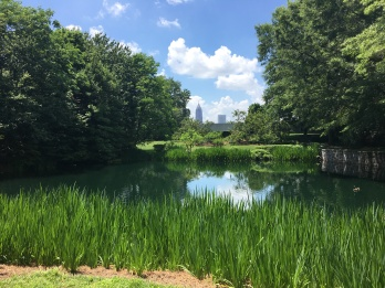 Pond and trees with a view of Atlanta skyline from the Jimmy Carter Presidential Library.